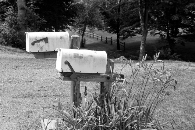 Our mailbox, all artsy and stuff.